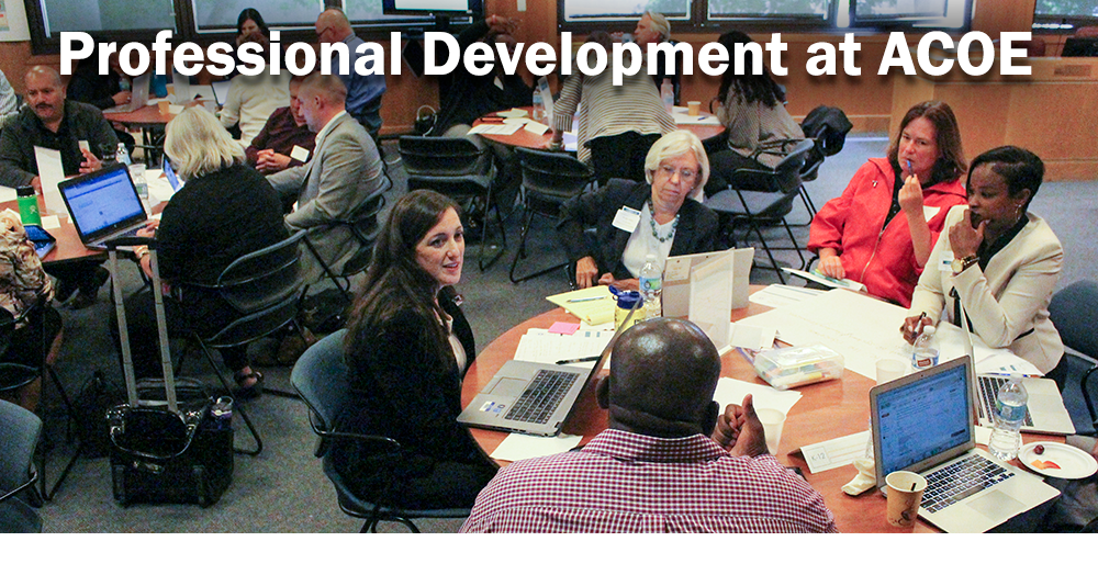 Professional Development at ACOE