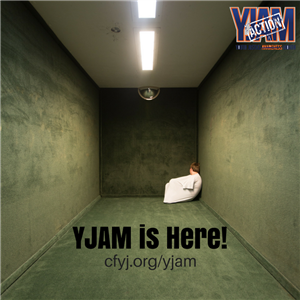 This is a photo of a publicity poster for YJAM that shows a young person in a jail cell.