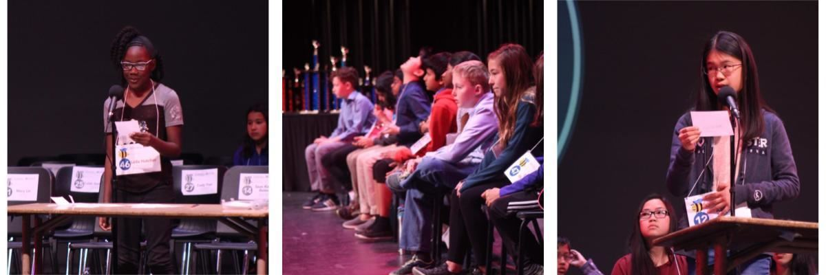 Spelling Bee Photos